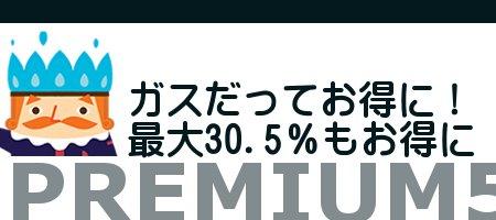 ニチガス・プレミアム5